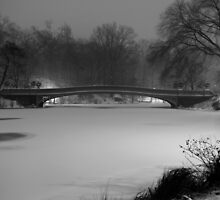 Central Park in the Snow 10 by Brian Ach