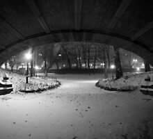 Central Park in the Snow 8 by Brian Ach