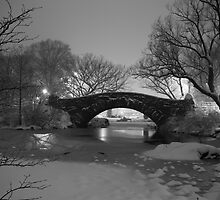 Central Park in the Snow 5 by Brian Ach