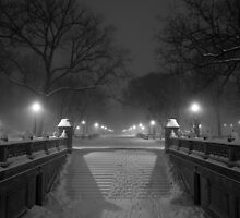 Central Park in the Snow 1 by Brian Ach