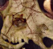 evil dead pug Sticker