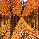 Treescape 2 by Rebecca Cozart