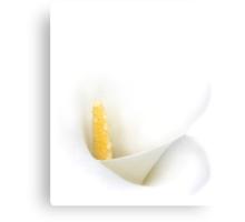 White Calla Lily Canvas Print