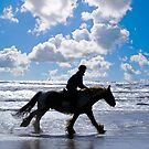 GALLOPING ALONG THE BEACH, WALES by kfbphoto