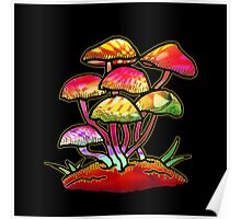Cluster of Shrooms  Poster