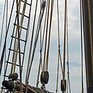 Rigging by phil decocco