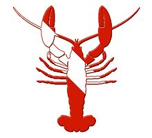 Lobster Scuba Diver Silhouette by surgedesigns
