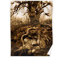 Stone Gaia Poster