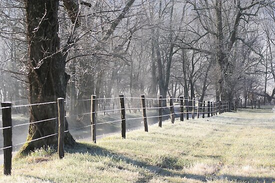 the frosted fence by Christopher  Ewing