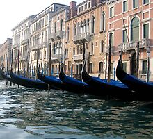 venice gondolas by david stevenson