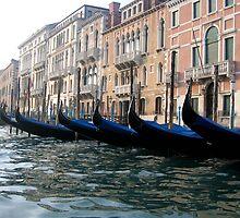 venice gondolas by david stevenson