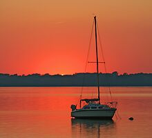 Sailboat on Lake Champlain by Vickie Emms