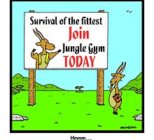Survival of the fittest by Hagen