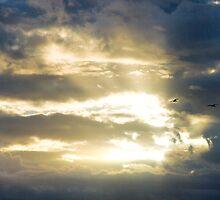 Glimmer of Hope by Jonicool