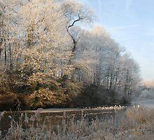 Winter in Brussels by jensNP