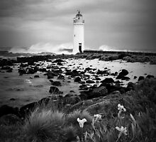 Port Fairy Lighthouse, Victoria, Aust by Gayle Shaw