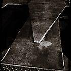 The Long Dark by Lance Jackson