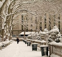 Bryant Park Winter by andykazie