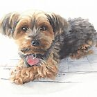 Calendar yorkshire terrier watercolor by Mike Theuer