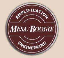 Wonderful Mesa Boogie by yober