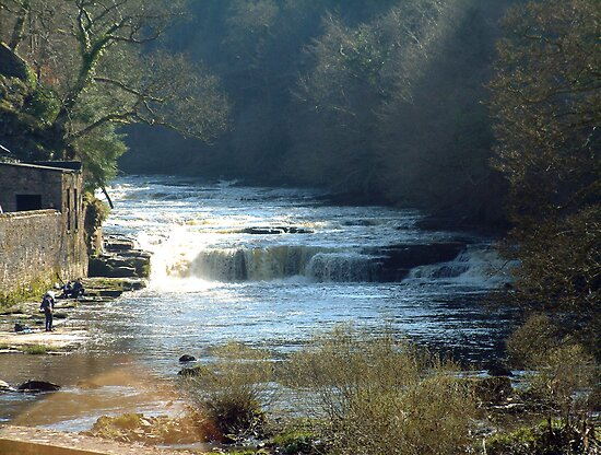 River Clyde at New Lanark by Tom Gomez