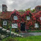 Autumn Cottage by Ian Mitchell