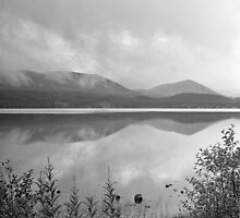 Loch Morlich reflections by Tim Haynes