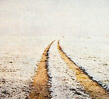 Path in Winter landscape by zenazero