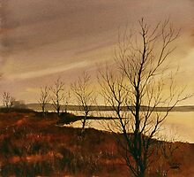 Winter at Lake Wilson by Lynne Wright