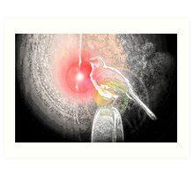 Bird Comfort :  Art Print