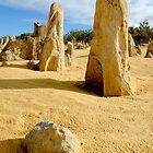 The Pinnacles, Western Australia by sasjacobs