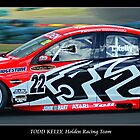 Todd Kelly, Holden Racing Team by David Smith