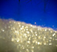 Through the Frosted Looking Glass by LINDA DEVLIN