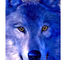 Wolf by Viterbo