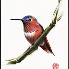 Little Hummer - Prisma pencil & acrylic painting by Rebecca Rees