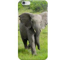 Young elephant charges at viewer  iPhone Case/Skin
