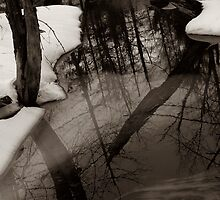 Winter Thaw by Merritt Brown III