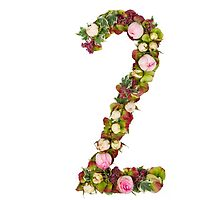 The number Two Part of a set of letters, Numbers and symbols of the Alphabet made with flowers by PhotoStock-Isra