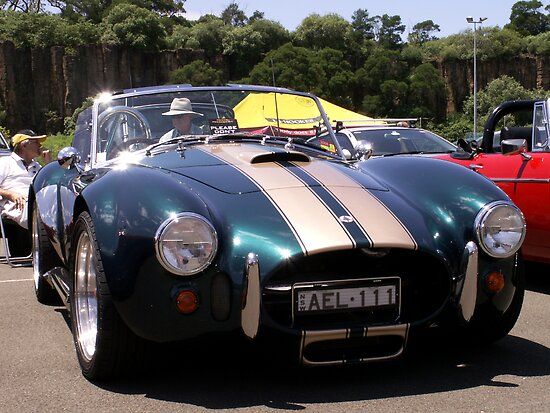 Shelby Cobra by Paul Buckley