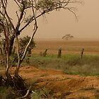 Mallee Dust - Red Cliffs, Vic by Angela Stewart