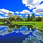 Wairakei International Golf Course Taupo by Stephen Johns