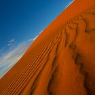 Textures in the sand - Big Red Simpson Desert by Michael Ellem
