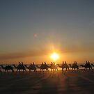 &quot;Those Camels&quot; Cable Beach,West.Aust by Lynda Kerr