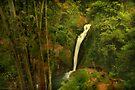 Tropical Waterfall by Antoine Dagobert
