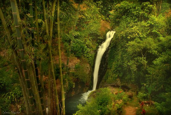 Tropical Waterfall by Antoine Dagobert