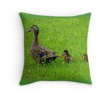 Come on Kids Move Along! - Mallard Ducks - NZ Throw Pillow