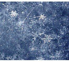 snow flakes- this is right out of the camera Photographic Print