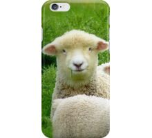 The Red Bubble Definition of Cute! - Lambs - NZ iPhone Case/Skin