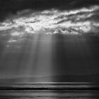 SUNBEAMS OVER THE SEA by Michael Carter