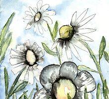 field of white daisy flowers daisies by derekmccrea